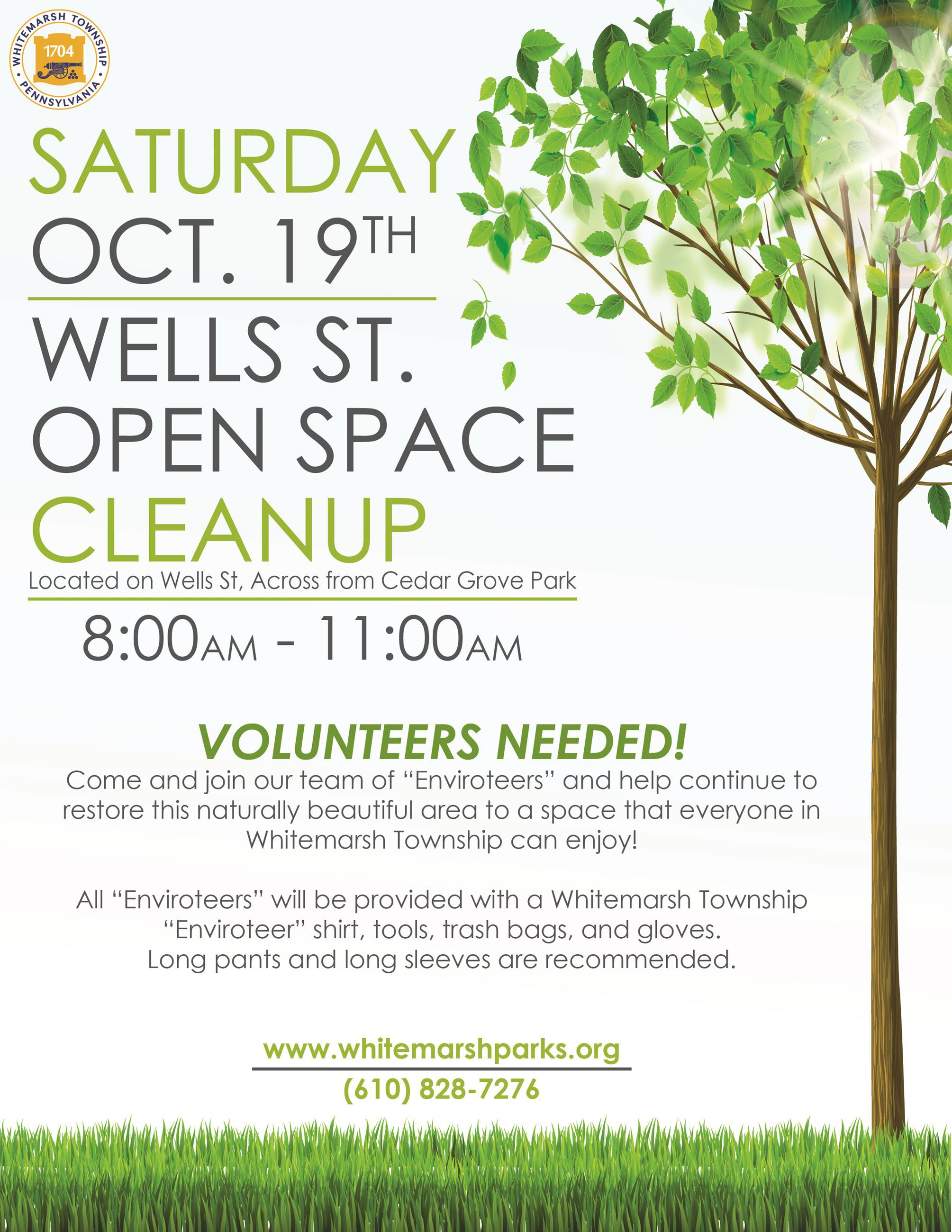 2019 Fall Wells St Cleanup